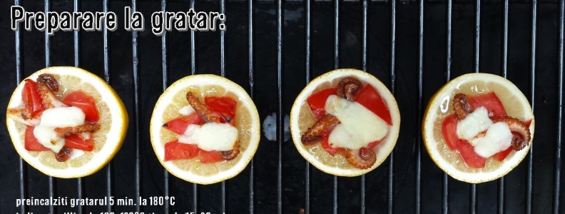 lamaie umpluta cu mozzarella caracatita gratar_Grill-Society.ro_2015-06-19